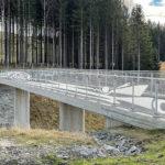 Svirr - 55 meter lang tegning
